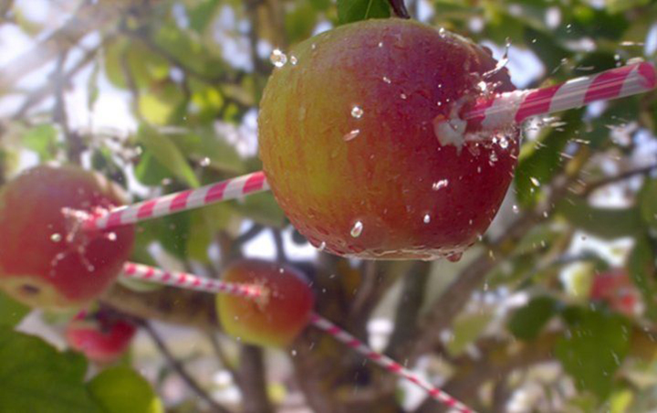 A Robinsons drinks commercial showing a CGI apple being pierced through an unnaturally long white a red striped straw. Rendered by nineteen twenty using Houdini and mantra using YellowDog's cloud render platform for additional speed of render delivery.