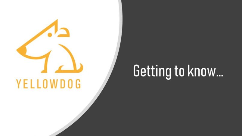 YellowDog Team Interviews. Click the image or read on to find out more about YellowDog, who are based in Bristol UK, and their team members.